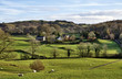 House in the Winster Valley, with grazing sheep.