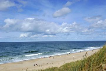 Dünenlandschaft Nordsseküste