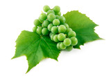 Bunch of Ripe Green Grapes with Leaf Isolated on White