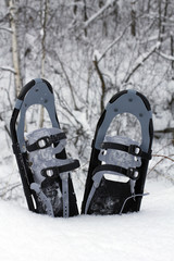 snow shoes in the snow