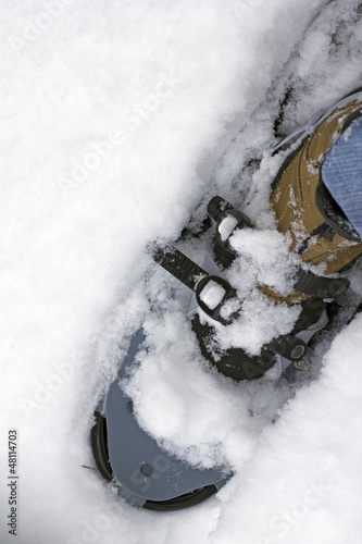 snow shoe closeup