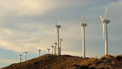 bonita vista molinos eolicos