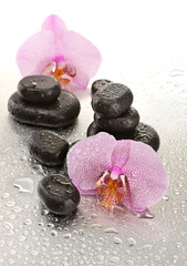 Spa stones and orchid flowers, on wet background.