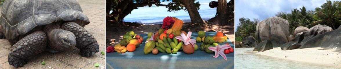 triptyque sur le thème des seychelles