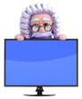 Judge is reviewing an LCD widescreen monitor