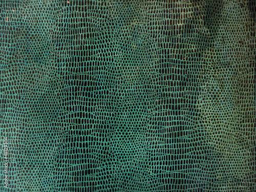 Peau de serpent vintage - 48129304