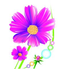 daisy flower art