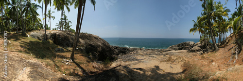 Coconut palms on the ocean shore, panorama