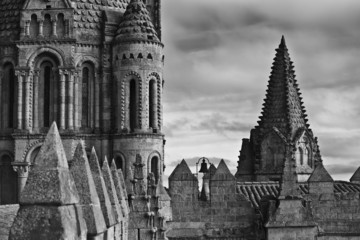 Detalles de la zona alta de la Catedral de Salamanca.