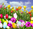 Frohe Ostern: Eier suchen in bunter Frühlingswiese