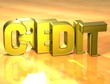 3D Word Credit on yellow background