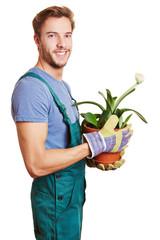 Gärtner mit Topfpflanze in der Hand