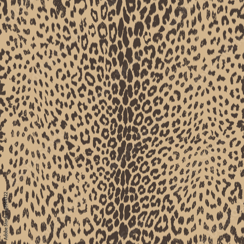 sexy leopard skin seamless background