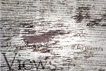 Grunge Zeitung
