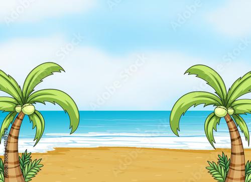 A sea shore