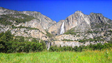 Yosemite falls with the meadow in the foreground.