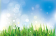 Vector of spring background, sky and grass.