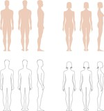 Vector illustration of men's and female's silhouettes