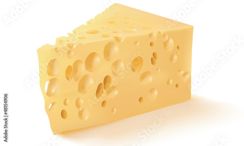 Cheese isolated on white. Vector illustration. Mesh