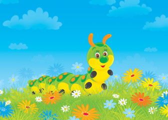Funny caterpillar among field flowers