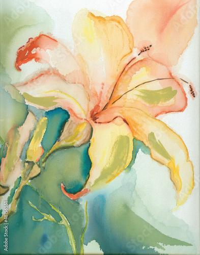 Lily © Heidrun Gellrich
