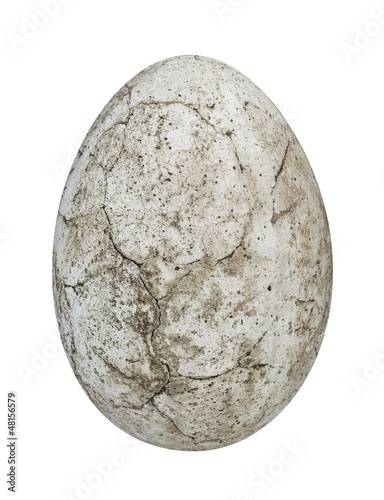 Poster Dinosaur egg