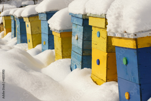 Colorful homes in winter