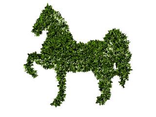 Cavallo, agricoltura biologica, verde, ecologia, allevamento