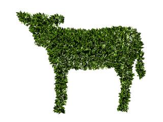 Vitello, agricoltura biologica, verde, ecologia, allevamento