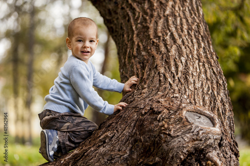 Little boy on the tree