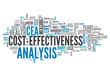 "Word Cloud ""Cost-Effectiveness Analysis"""