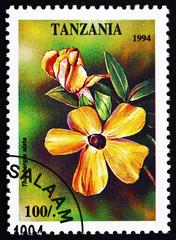 Postage stamp Tanzania 1994 Thunbergia Alata, Plant