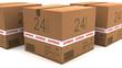 Cajas envio 24 horas