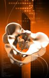 Pelvic girdle poster