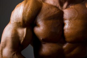 Muscular male torso on dark background