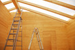 Ladders in Partially Constructed Wooden House
