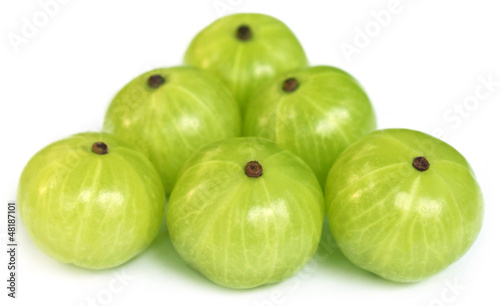 Group of Amla fruits with selective focus