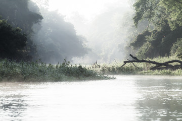 Amazon river in morning