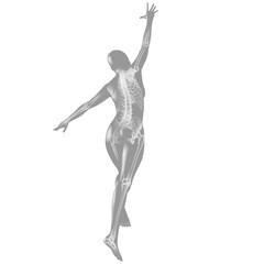 Bewegungsapparat: Silhouette mit Skelett