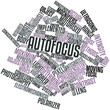 Word cloud for Autofocus