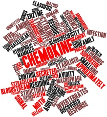 Word cloud for Chemokine