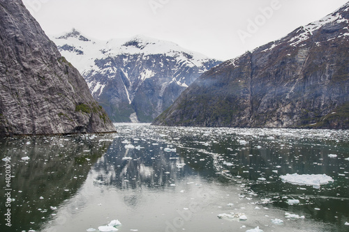 Calm Water in Alaska with Ice Chunks