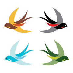 Four colorful birds in flight on white background - vector