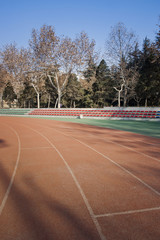 synthetic surface ground
