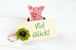 Schwein mit Viel Glück Karte