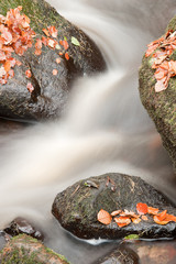 Beautiful waterfall flowing through Autumn Fall vibrant landscap