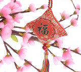 chinese knot, good fortune before will start chinese new year