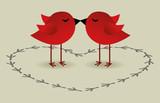 Fototapety birds love card