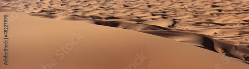 view over a Sand Dune in the Sahara desert