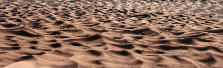 panorama of sand dunes in the Sahara desert
